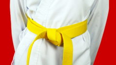 Red-and-Yellow-belt